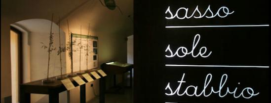 Una diretta su Rai TGR Umbria dal Museo della civiltà dell'Olivo di Trevi per la 3° tappa dell'itinerario di avvicinamento ad Expo 2015 .