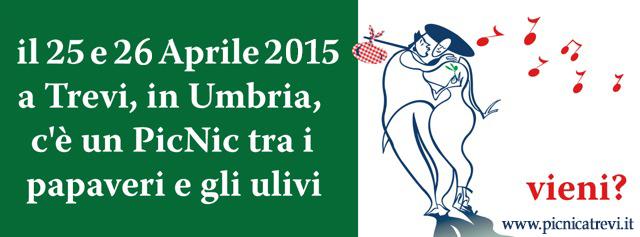 banner picnic2015