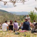 """""""Pic & Nic a Trevi, arte, musica e merende tra gli olivi"""". Giornata conclusiva, domenica 22 aprile, per il Pic Nic più bello d'Italia"""