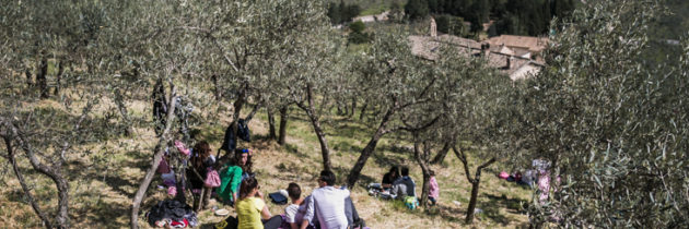 """Il 21 e 22 aprile 2018 torna  """"Pic & Nic a Trevi. Arte, musica e merende tra gli olivi"""". Sarà il pic nic della fascia olivata Assisi – Spoleto recentemente insignita dal Mipaaf come Paesaggio Rurale Storico"""