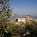 """""""Rievocazione della Festa della Frasca """" al via domani, sabato 23 novembre, a Giano dell'Umbria i festeggiamenti per la """"benfinita"""" della raccolta delle olive"""