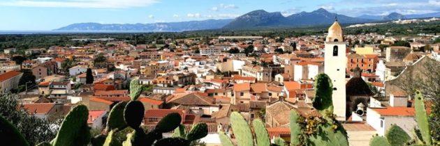 Svelati gli oli della Sardegna finalisti del Premio Nazionale Ercole Olivario 2020