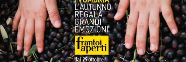 Dal 29 ottobre al 27 novembre in Umbria torna alla ribalta l'olio extravergine d'oliva con i 5 weekend di Frantoi Aperti