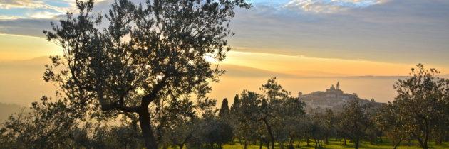 Giornalisti americani attratti  dalla cultura e dalla qualità dell'olio umbro, ospiti della Strada dell'olio dop Umbria