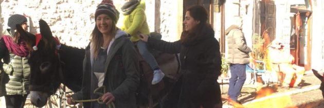 Rimane acceso, fino al 6 gennaio, l'Albero di Natale più grande della Valnerina a Monteleone di Spoleto