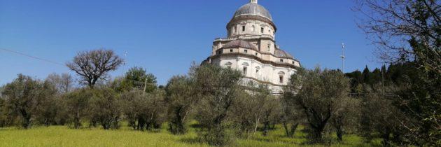 IN ATTESA DELL'ERCOLE OLIVARIO E DELLA PREMIAZIONE UFFICIALE DEI MIGLIORI OLI EXTRAVERGINI D'ITALIA