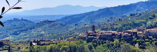 Svelati gli oli della Toscana finalisti del Premio Nazionale Ercole Olivario 2020