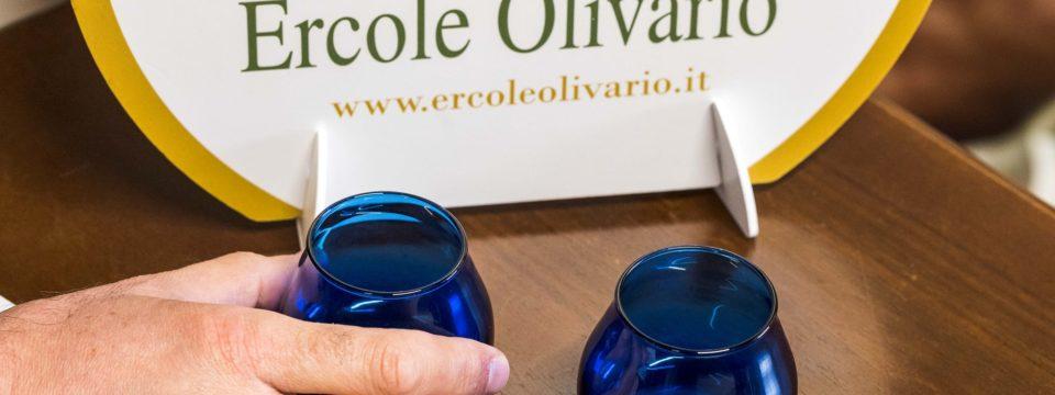 """""""Call"""" per produttori di Olio extravergine di Oliva umbri di altissima qualità, per il concorso """"Oro Verde dell' Umbria"""" preliminare per Ercole Olivario 2021"""