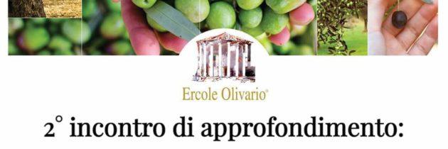 Ercole Olivario 2021: 2° incontro di approfondimento sul tema dell'olio