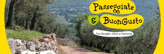 """""""Passeggiate & buon gusto. Tra borghi, ulivi e fattorie""""  un programma di esperienze tra natura, cultura ed enogastronomia in Umbria"""