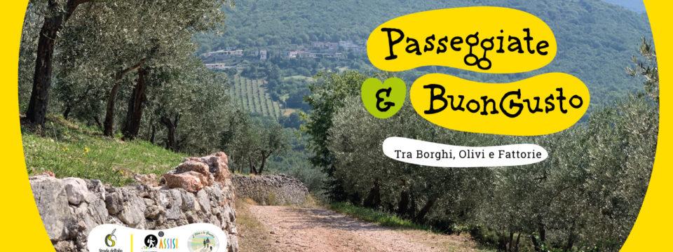 """Sabato 24 luglio a Perugia, """"Passeggiate & buon gusto. Tra borghi, ulivi e fattorie""""  un programma di esperienze tra natura, cultura ed enogastronomia in Umbria"""